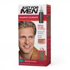 Teinture cheveux homme Just for Men JFH15