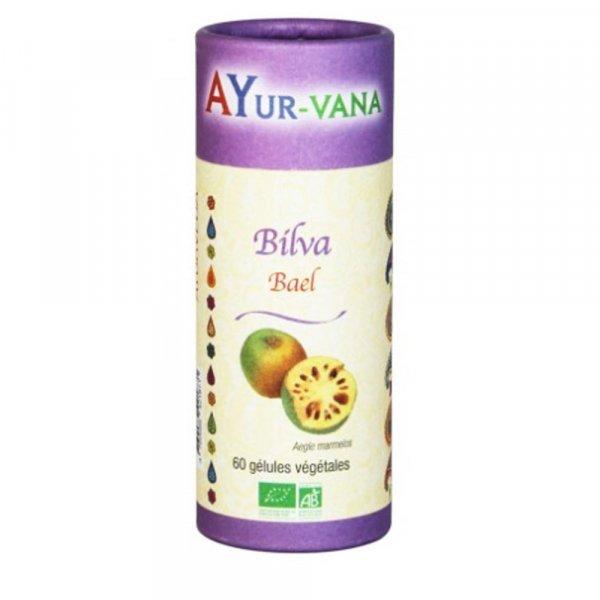 Complement alimentaire Bilva