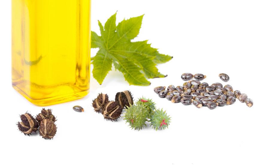 huile de ricin barbe osez une toison dense et douce